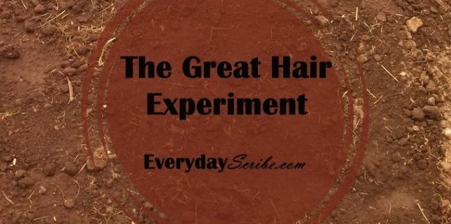 The Great Hair Experiment