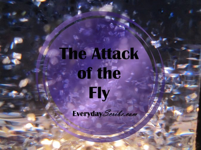 The Attack of the Fly
